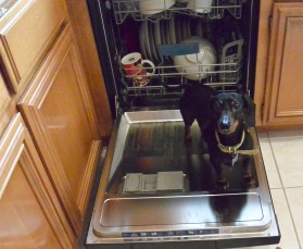 LeBron helping in the dishwasher